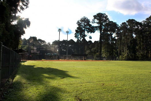 View from right field
